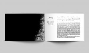 Düst pages3